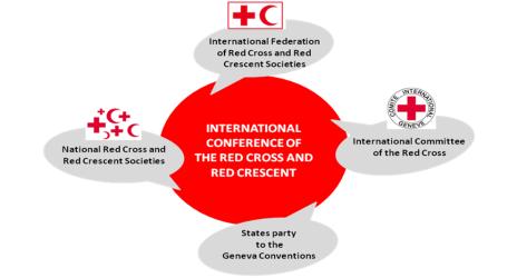 IC_org
